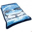 Dolphins Blanket